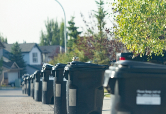 Household Waste in Bins