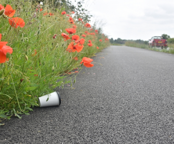 Litter On Road
