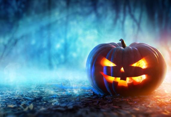 DP Skip Hire - Halloween